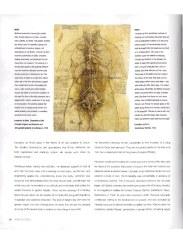 preview-anatomia-obbligatorio-simblet-anatomyforartist-intero-13