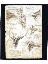 preview-anatomia-obbligatorio-simblet-anatomyforartist-intero-14