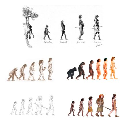 Evolucion-mujer